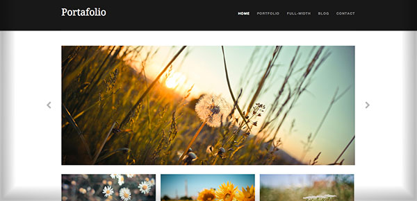 theme-wordpress-gratuit-2013-portafolio
