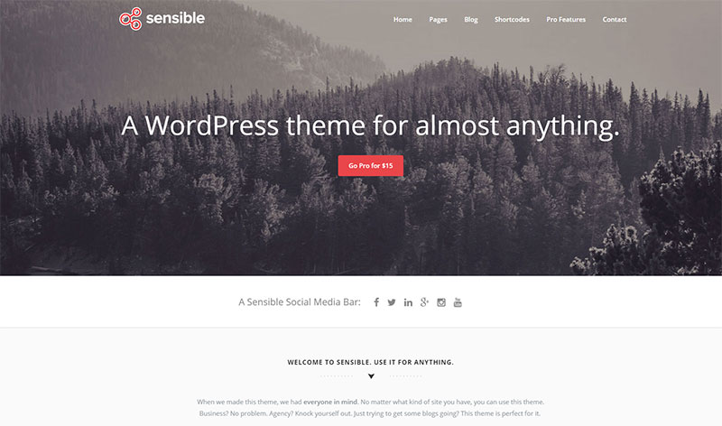 Sensible---A-sensible--free-WordPress-theme