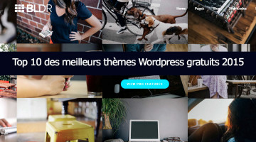 theme-wordpress-gratuit-2015