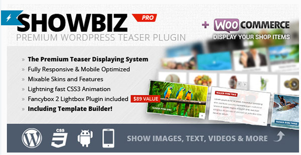 WordPress---Showbiz-Pro-Responsive-Teaser-WordPress