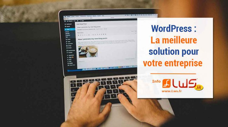 wordpress-solution-entreprise